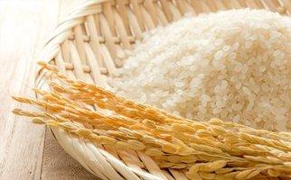 トペコのもち麦トペコ2k