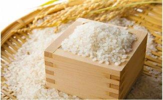 佐々木米穀10kg