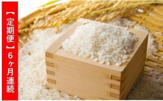 佐々木米穀6ヶ月